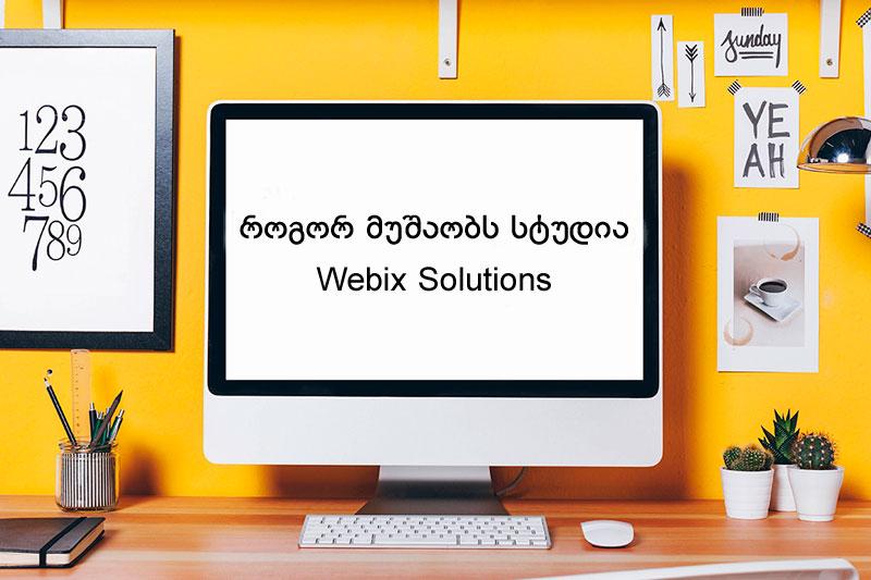 როგორ მუშაობს Webix Solutions